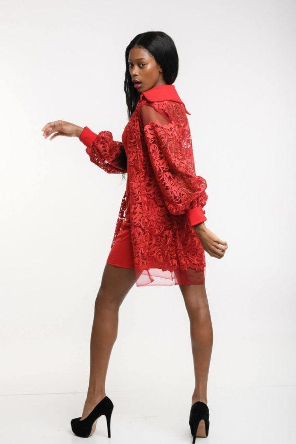 Lace collar shirt dress for women, button front dress with slip dress